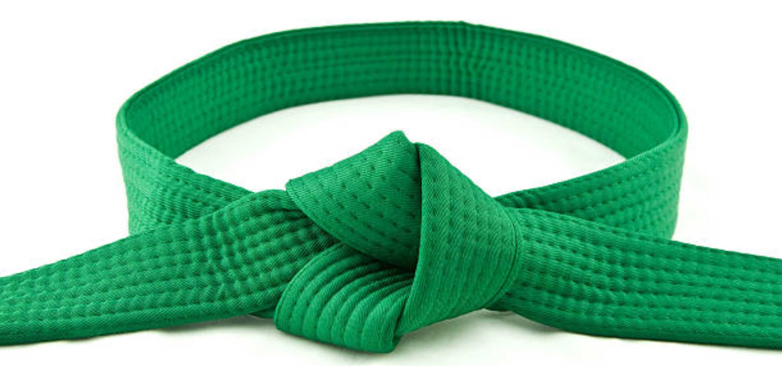 Cursuri Lean Six Sigma - Centura verde